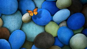Maya Angelou's Butterfly